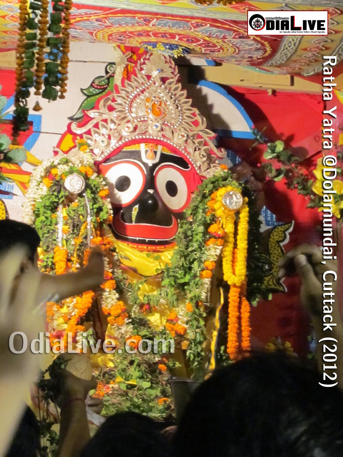 Ratha Yatra 2012 (4)