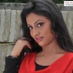 hot Odia Actress Wallpapers