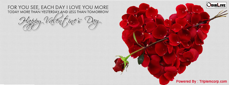 valentines-day-facebook-covers